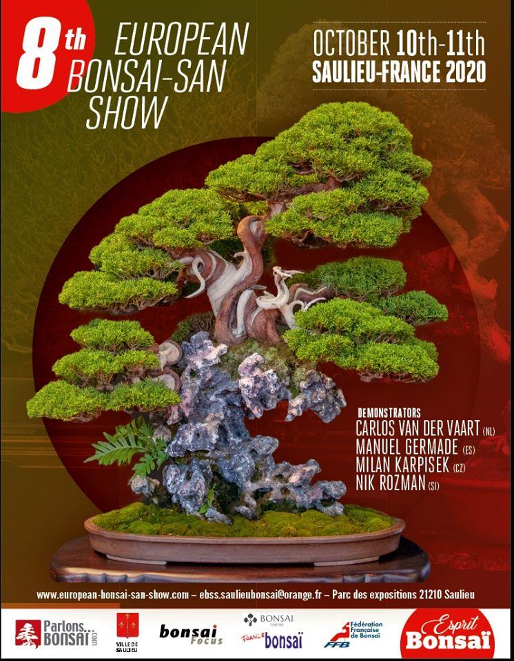 European bonsai san show 2020