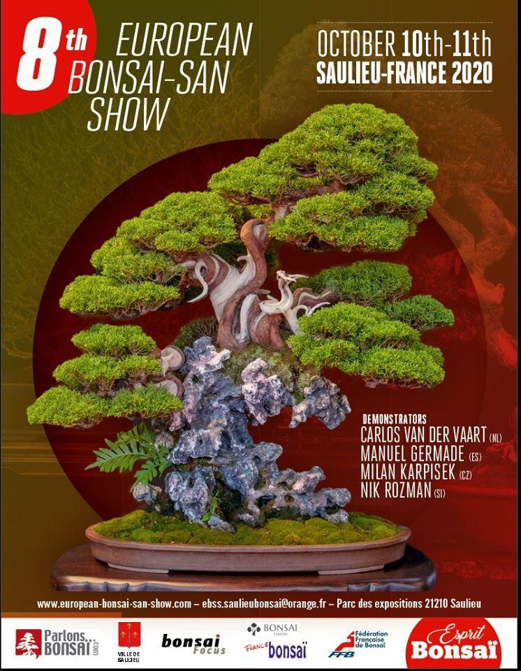 European bonsai san show 2020