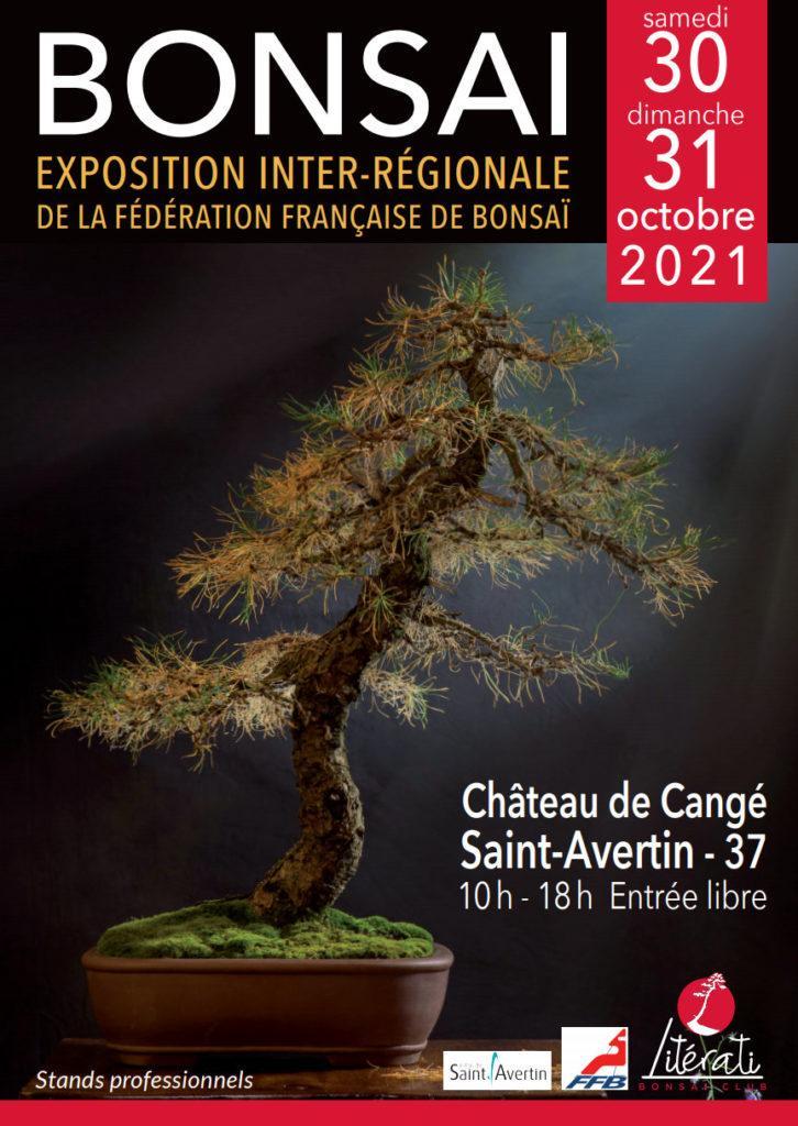 Exposition bonsai supra regionale centre 2021 1 726x1024