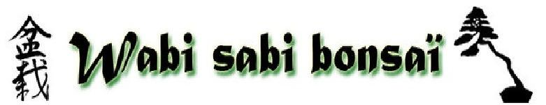 Logo wabi sabi